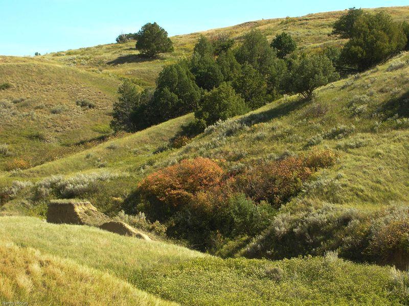 Sage creek saturday