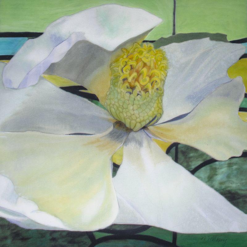 Fordyce magnolia