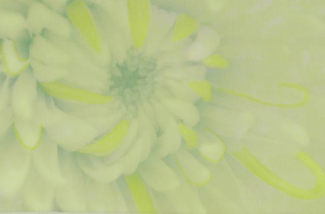 Hand-painted digital silk
